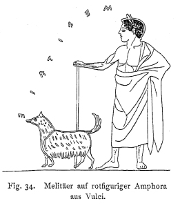 Line drawing from an Amphora found in Vulci, ca. 500 BC